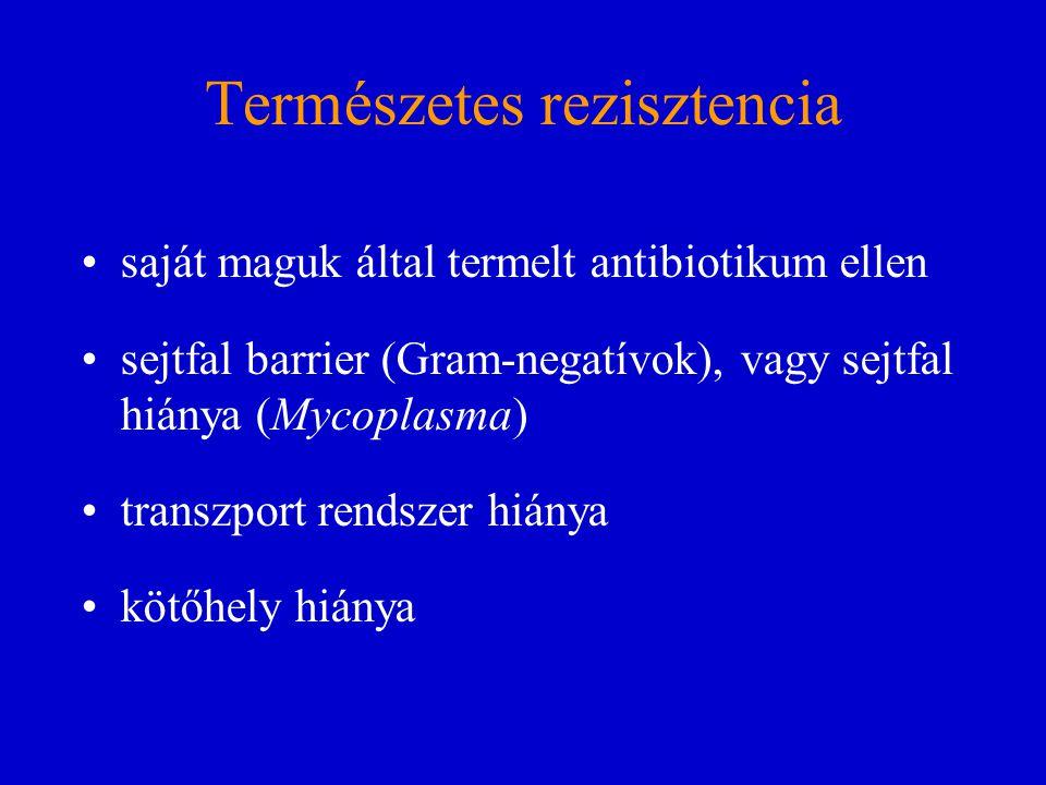 Természetes rezisztencia saját maguk által termelt antibiotikum ellen sejtfal barrier (Gram-negatívok), vagy sejtfal hiánya (Mycoplasma) transzport re