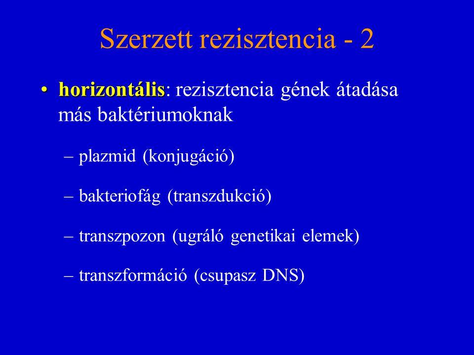Szerzett rezisztencia - 2 horizontálishorizontális: rezisztencia gének átadása más baktériumoknak –plazmid (konjugáció) –bakteriofág (transzdukció) –t