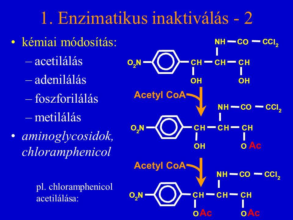 1. Enzimatikus inaktiválás - 2 kémiai módosítás: –acetilálás –adenilálás –foszforilálás –metilálás aminoglycosidok, chloramphenicol H N O 2 NO 2 CHCHC