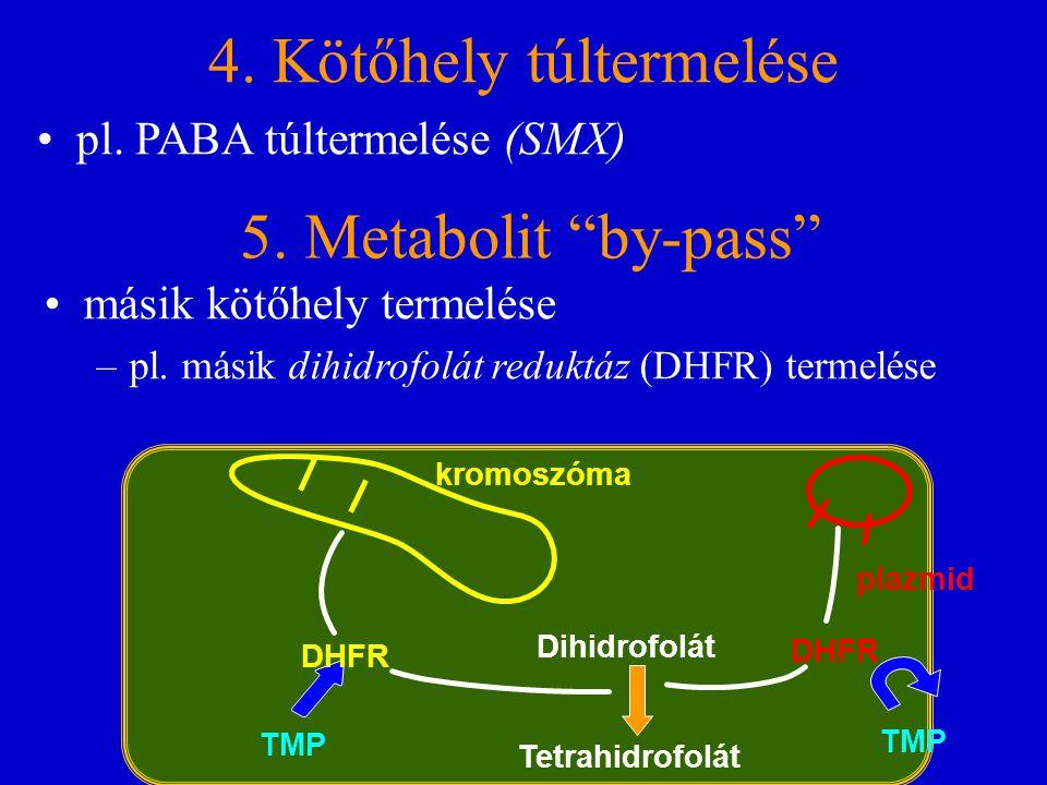 """4. Kötőhely túltermelése pl. PABA túltermelése (SMX) 5. Metabolit """"by-pass"""" másik kötőhely termelése –pl. másik dihidrofolát reduktáz (DHFR) termelése"""