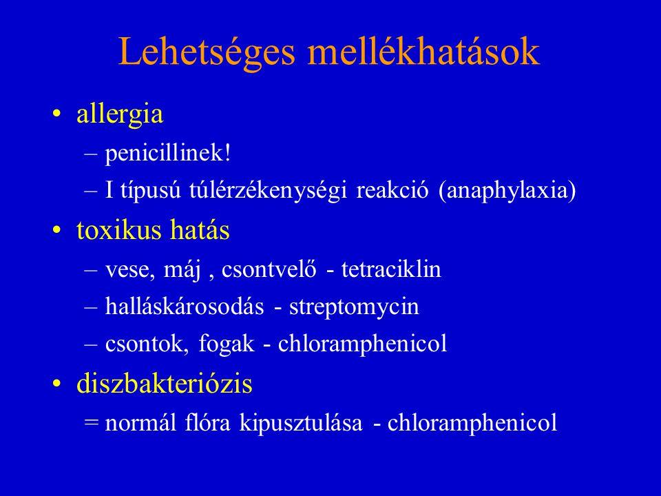 Lehetséges mellékhatások allergia –penicillinek! –I típusú túlérzékenységi reakció (anaphylaxia) toxikus hatás –vese, máj, csontvelő - tetraciklin –ha