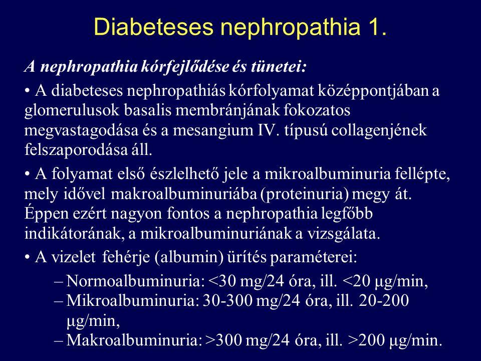 Diabeteses nephropathia 1.