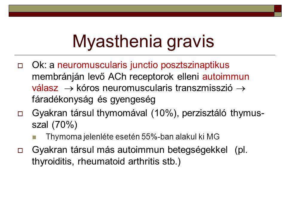 Myasthenia gravis  Ok: a neuromuscularis junctio posztszinaptikus membránján levő ACh receptorok elleni autoimmun válasz  kóros neuromuscularis tran