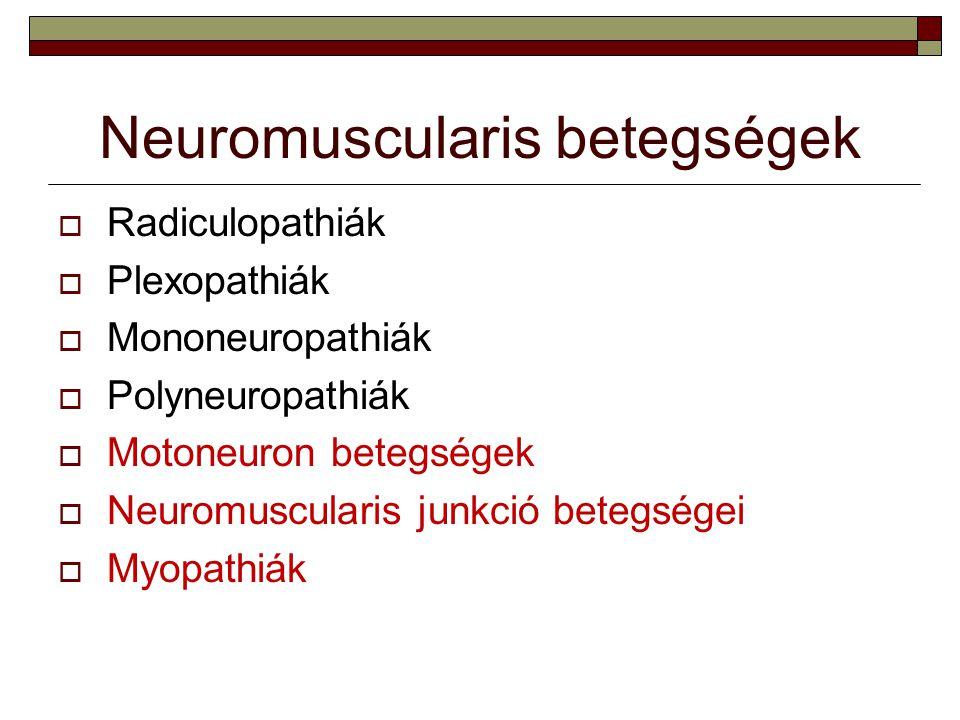 Felnőttkori spinalis izomatrophiák / peripheriás motoneuron betegségek Benignus focalis amyotrophia  Általában sporadikus  Gyakoribb férfiaknál  Fiatal felnőttkorban kezdődik, néhány éven keresztül lassan progrediál, majd stagnál  Tünetek: kiskézizom atrophia az egyik oldalon  Differential diagnosis: ALS, n.