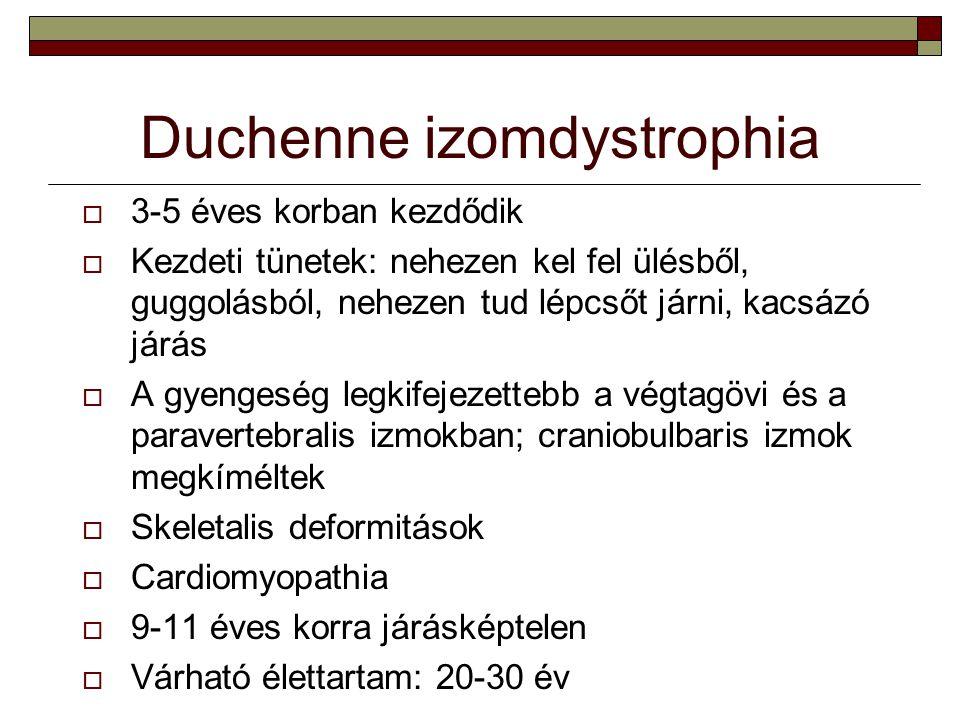 Duchenne izomdystrophia  3-5 éves korban kezdődik  Kezdeti tünetek: nehezen kel fel ülésből, guggolásból, nehezen tud lépcsőt járni, kacsázó járás 