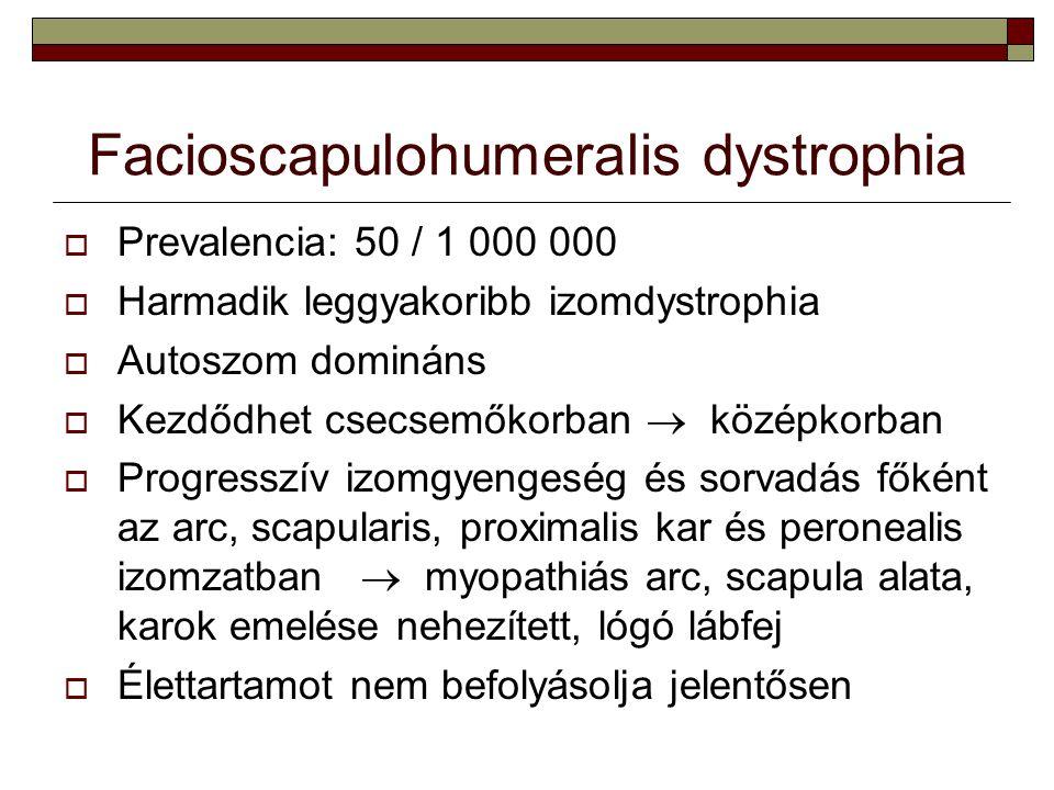 Facioscapulohumeralis dystrophia  Prevalencia: 50 / 1 000 000  Harmadik leggyakoribb izomdystrophia  Autoszom domináns  Kezdődhet csecsemőkorban 