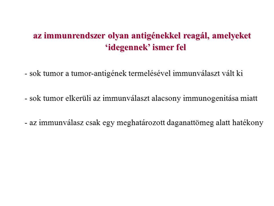 az immunrendszer olyan antigénekkel reagál, amelyeket 'idegennek' ismer fel sok tumor a tumor-antigének termelésével immunválaszt vált ki - sok tumor a tumor-antigének termelésével immunválaszt vált ki - sok tumor elkerüli az immunválaszt alacsony immunogenitása miatt - az immunválasz csak egy meghatározott daganattömeg alatt hatékony