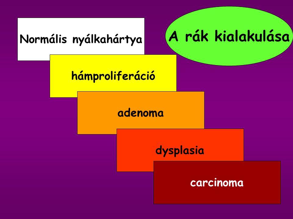 CRC hazánkban Második leggyakoribb halálos malignoma 40 év alatt 5x-ösre nőtt a morbiditás Minden 17. magyar élete folyamán CRC- s lesz Közülük minden