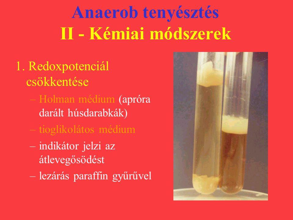 Anaerob tenyésztés II - Kémiai módszerek 1. Redoxpotenciál csökkentése –Holman médium (apróra darált húsdarabkák) –tioglikolátos médium –indikátor jel