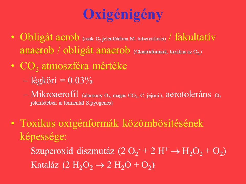 Oxigénigény Obligát aerob (csak O 2 jelenlétében M. tuberculosis) / fakultatív anaerob / obligát anaerob (Clostridiumok, toxikus az O 2, ) CO 2 atmosz