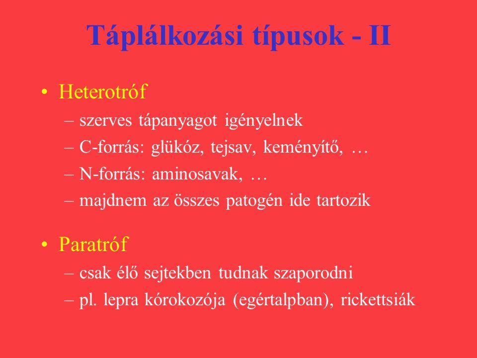 Energianyerés típusai Légzés (aerobok!) –van kataláz és szuperoxid-diszmutáz enzim –szénhidrát anyagcsere: glükóz  piroszőlősav  citrátkör  légzési lánc  sok ATP + CO 2 + H 2 O –terminális elektron-akceptor = O 2 Fermentáció (anaerobok!) –nincs enzim a káros oxidációs termékek semlegesítésére glükóz  etanol + tejsav  kevés ATP + CO 2 + H 2