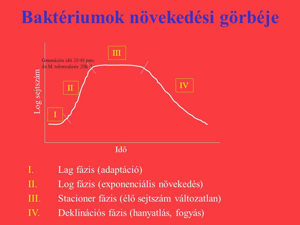 Baktériumok növekedési görbéje Idő Log sejtszám IV III II I I. Lag fázis (adaptáció) II. Log fázis (exponenciális növekedés) III. Stacioner fázis (élő