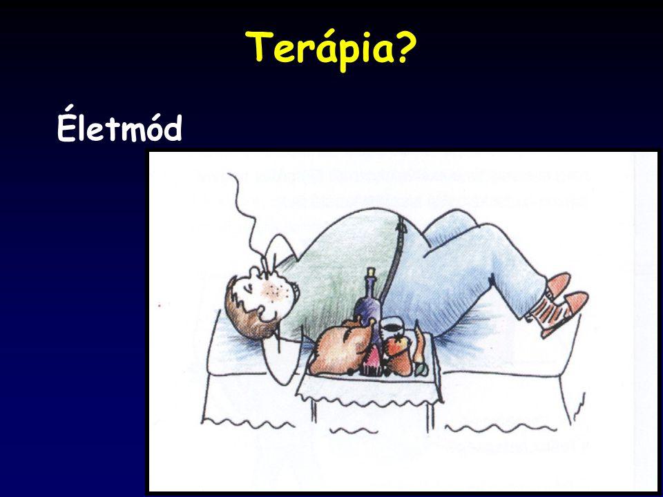 Terápia? Életmód