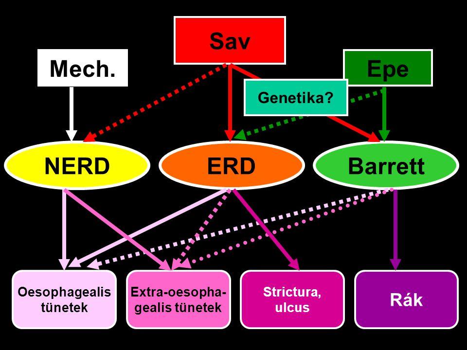 NERDERDBarrett Sav Mech.Epe Oesophagealis tünetek Extra-oesopha- gealis tünetek Strictura, ulcus Rák Genetika?