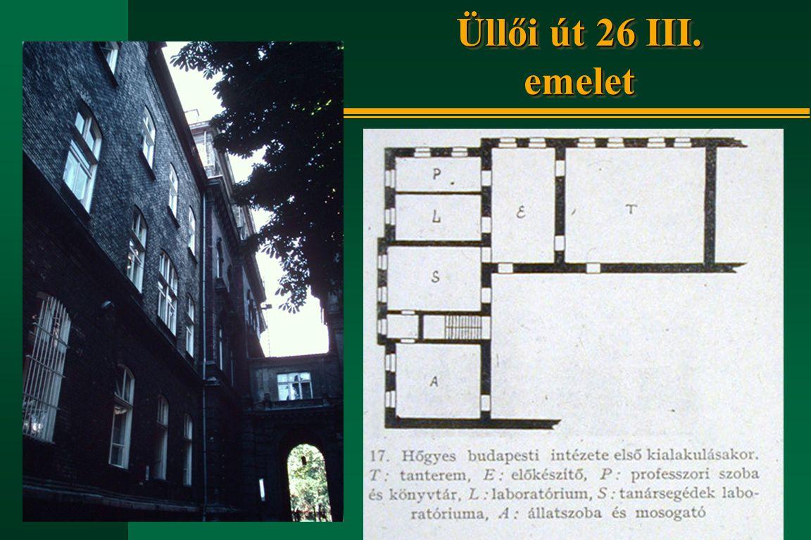 Üllői út 26 III. emelet