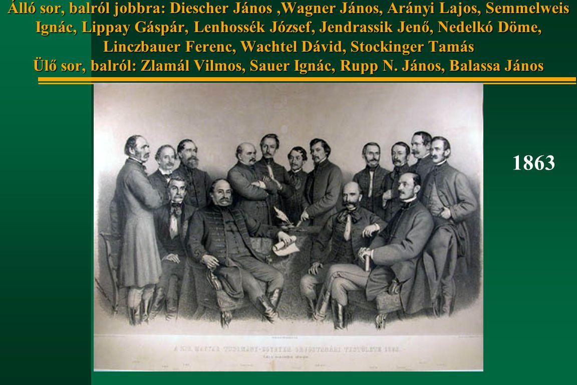 Álló sor, balról jobbra: Diescher János,Wagner János, Arányi Lajos, Semmelweis Ignác, Lippay Gáspár, Lenhossék József, Jendrassik Jenő, Nedelkó Döme,
