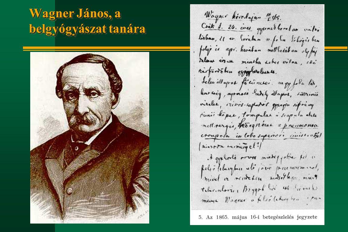 Hőgyes Endre életének kronológiája n 1874 febr.