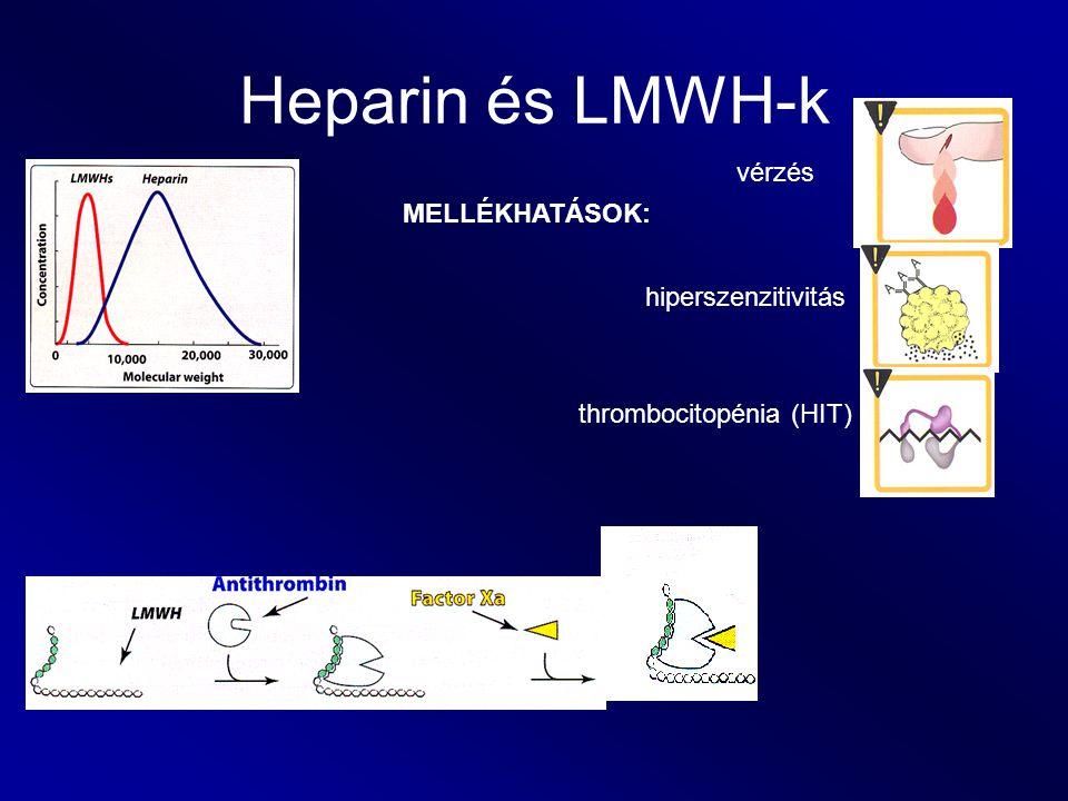 Heparin és LMWH-k vérzés MELLÉKHATÁSOK: hiperszenzitivitás thrombocitopénia (HIT)