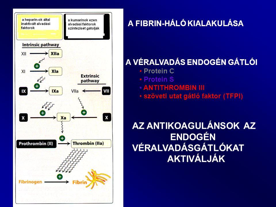 A FIBRIN-HÁLÓ KIALAKULÁSA A VÉRALVADÁS ENDOGÉN GÁTLÓI Protein C Protein S ANTITHROMBIN III szöveti utat gátló faktor (TFPI) AZ ANTIKOAGULÁNSOK AZ ENDO