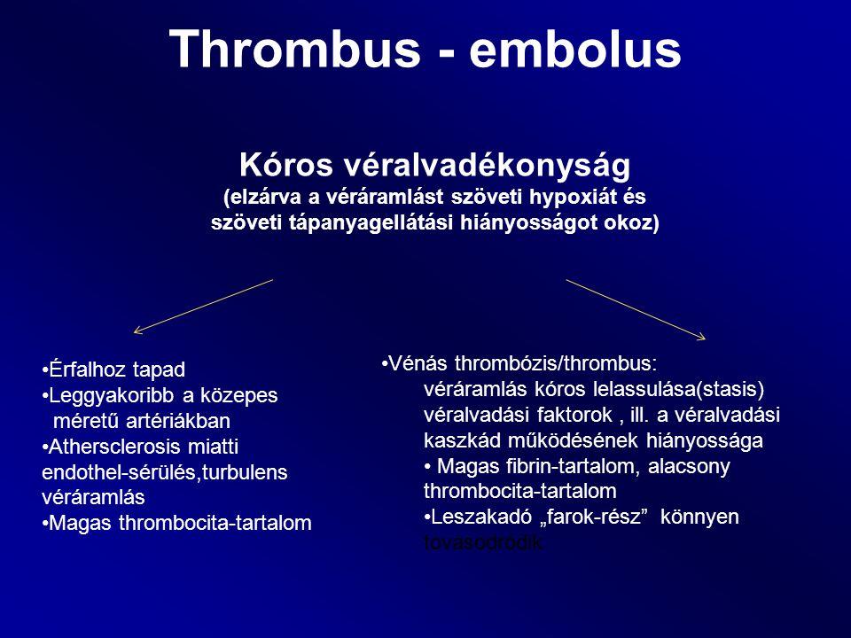 Thrombus - embolus Érfalhoz tapad Leggyakoribb a közepes méretű artériákban Athersclerosis miatti endothel-sérülés,turbulens véráramlás Magas thromboc