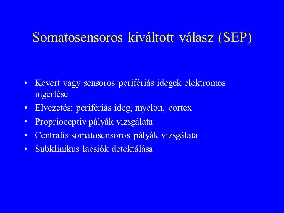 Somatosensoros kiváltott válasz (SEP) Kevert vagy sensoros perifériás idegek elektromos ingerlése Elvezetés: perifériás ideg, myelon, cortex Proprioceptiv pályák vizsgálata Centralis somatosensoros pályák vizsgálata Subklinikus laesiók detektálása