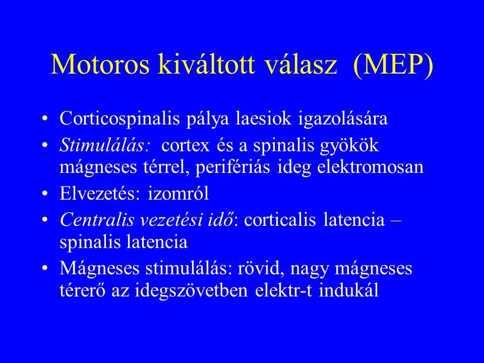 Motoros kiváltott válasz (MEP) Corticospinalis pálya laesiok igazolására Stimulálás: cortex és a spinalis gyökök mágneses térrel, perifériás ideg elektromosan Elvezetés: izomról Centralis vezetési idő: corticalis latencia – spinalis latencia Mágneses stimulálás: rövid, nagy mágneses térerő az idegszövetben elektr-t indukál