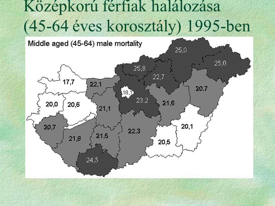 Középkorú férfiak halálozása (45-64 éves korosztály) 1995-ben