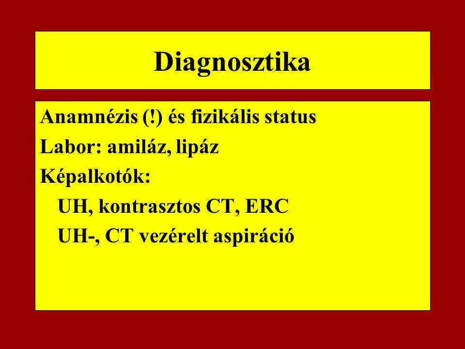 Diagnosztika Anamnézis (!) és fizikális status Labor: amiláz, lipáz Képalkotók: UH, kontrasztos CT, ERC UH-, CT vezérelt aspiráció