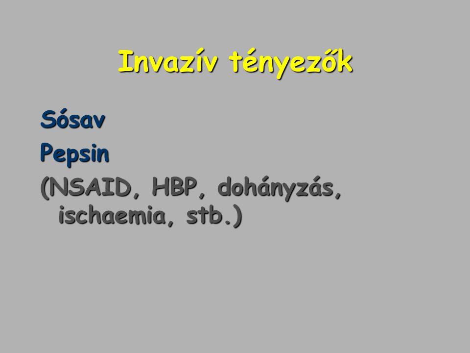 Invazív tényezők SósavPepsin (NSAID, HBP, dohányzás, ischaemia, stb.)