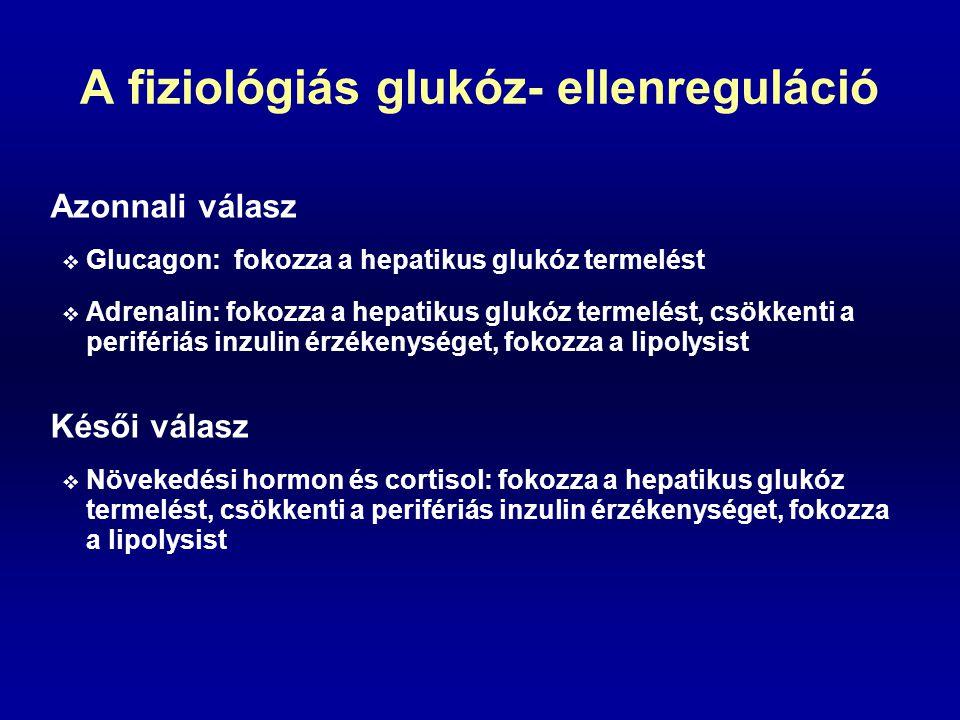 A fiziológiás glukóz- ellenreguláció Azonnali válasz  Glucagon: fokozza a hepatikus glukóz termelést  Adrenalin: fokozza a hepatikus glukóz termelés