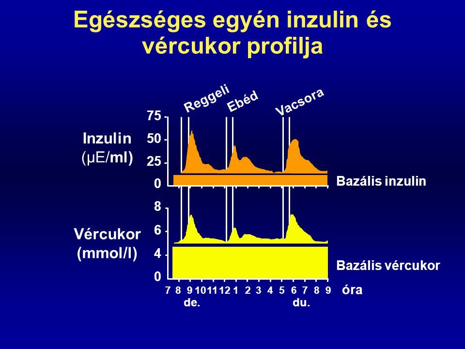 Normális inzulinszekréció Bazális inzulin szekréció (éhgyomri) 0,5-1 E inzulin/óra 5-15  E/ml szérum- inzulin koncentráció Stimulált inzulin szekréció (étkezés hatására) 60-80  E/ml szérum- inzulin koncentráció (étkezés kezdetétől 30-60.