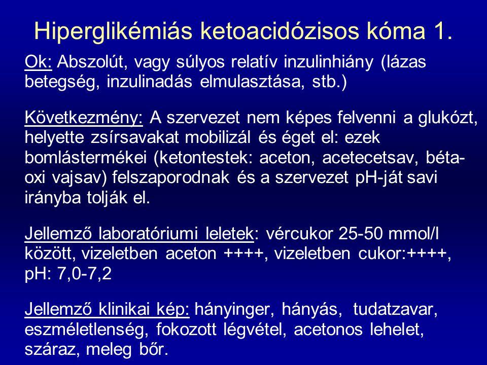 Hiperglikémiás ketoacidózisos kóma 1. Ok: Abszolút, vagy súlyos relatív inzulinhiány (lázas betegség, inzulinadás elmulasztása, stb.) Következmény: A