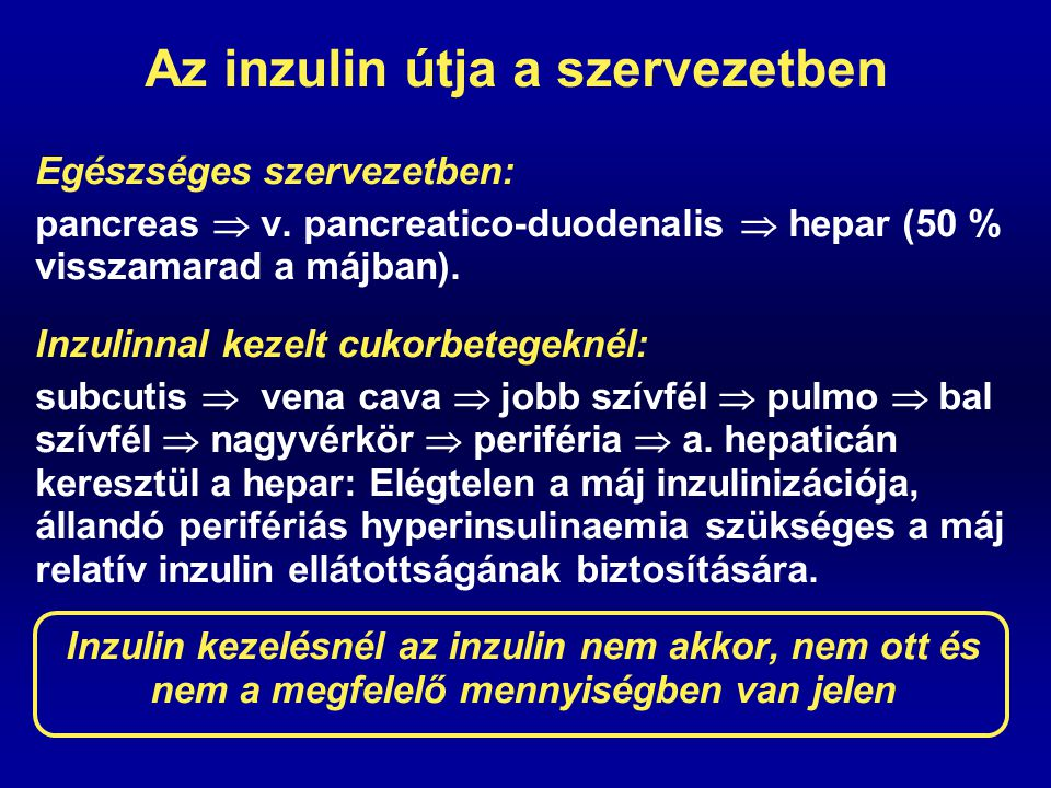 Az inzulin útja a szervezetben Egészséges szervezetben: pancreas  v. pancreatico-duodenalis  hepar (50 % visszamarad a májban). Inzulinnal kezelt cu