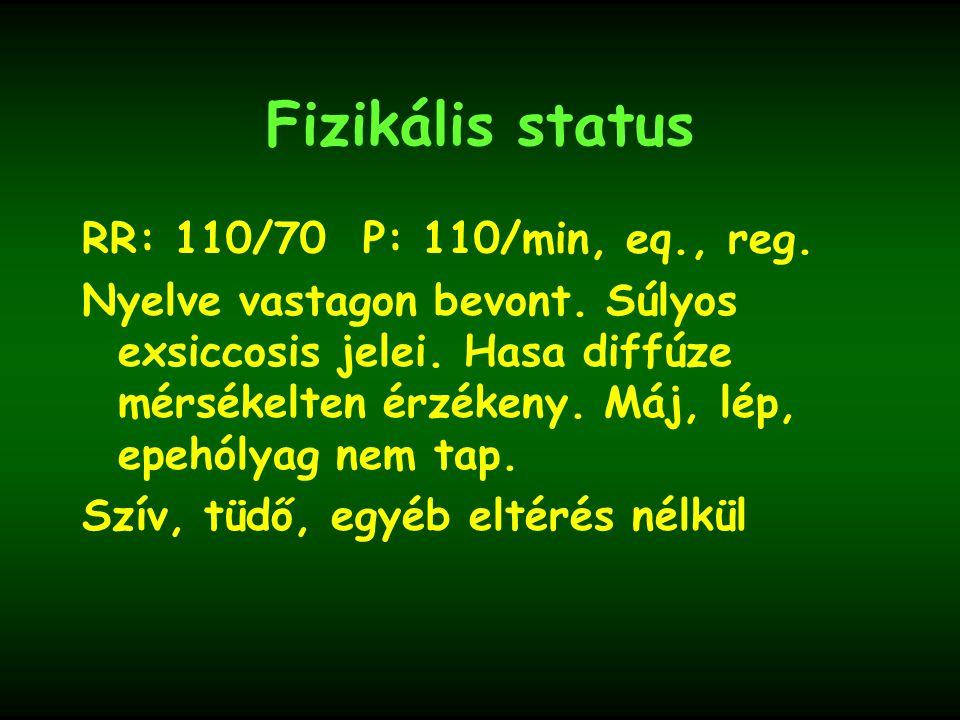 Fizikális status RR: 110/70 P: 110/min, eq., reg. Nyelve vastagon bevont. Súlyos exsiccosis jelei. Hasa diffúze mérsékelten érzékeny. Máj, lép, epehól