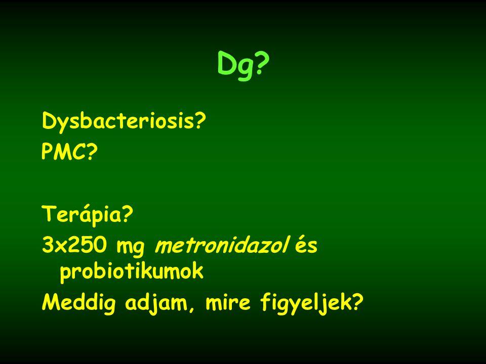 Dysbacteriosis? PMC? Terápia? 3x250 mg metronidazol és probiotikumok Meddig adjam, mire figyeljek?