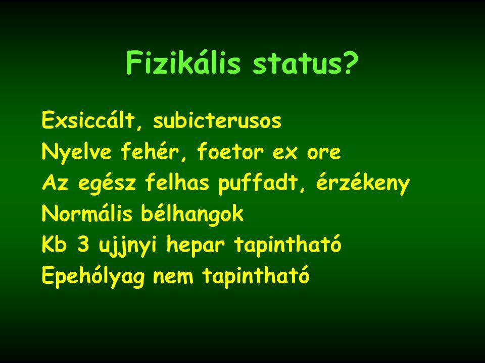 Fizikális status Jó általános állapot, láztalan, pulzus, vérnyomás normális.