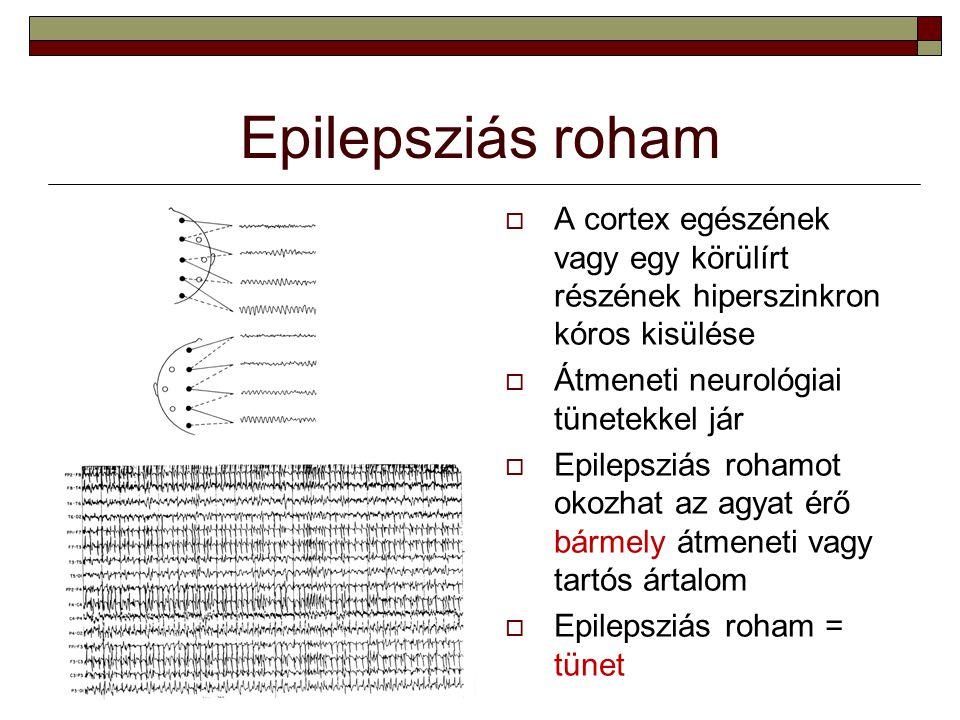 Alkalmi roham versus epilepszia betegség  Alkalmi roham (acut symptomás roham): az agy átmeneti kóros állapotának tünete Alkohol-, drogmegvonás Hipoglikémia Láz  Epilepszia betegség: az agyban tartós epilepsziás működészavar áll fenn → spontán ismétlődő rohamok