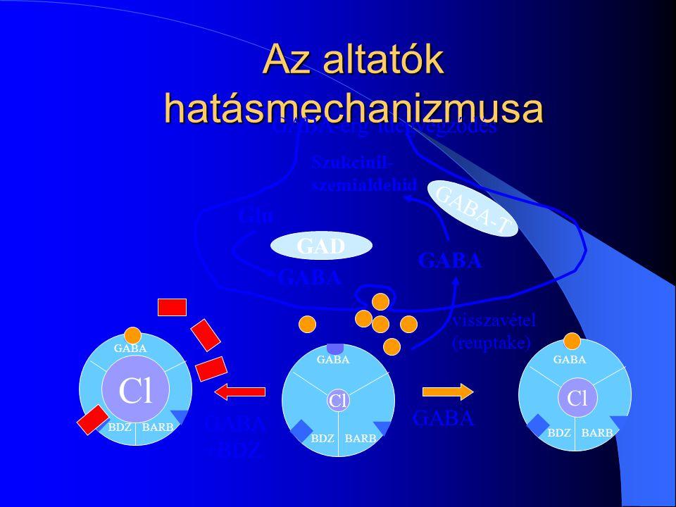 BARBBDZ GABA Az altatók hatásmechanizmusa GABA-T Glu GABA Szukcinil- szemialdehid GAD Cl BARBBDZ GABA Cl BARBBDZ GABA Cl GABA +BDZ GABA visszavétel (r