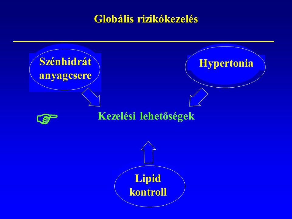 Kezelési lehetőségek Hypertonia Szénhidrát anyagcsere Globális rizikókezelés Lipid kontroll 