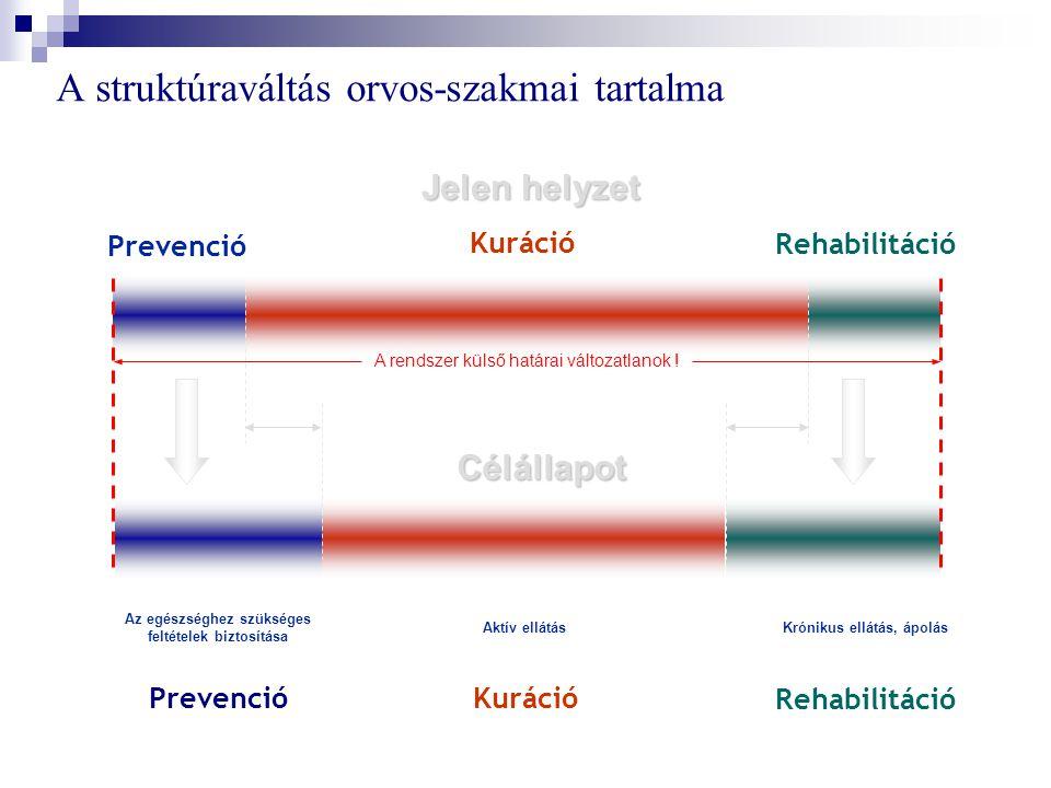 A struktúraváltás orvos-szakmai tartalma Jelen helyzet Aktív ellátás Kuráció Célállapot Prevenció Kuráció Rehabilitáció Az egészséghez szükséges feltételek biztosítása Prevenció Krónikus ellátás, ápolás Rehabilitáció A rendszer külső határai változatlanok !