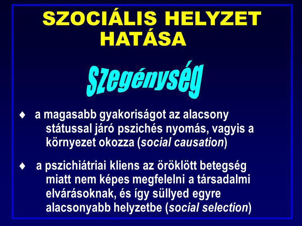 SZOCIÁLIS HELYZET HATÁSA  a magasabb gyakoriságot az alacsony státussal járó pszichés nyomás, vagyis a környezet okozza ( social causation )  a pszi