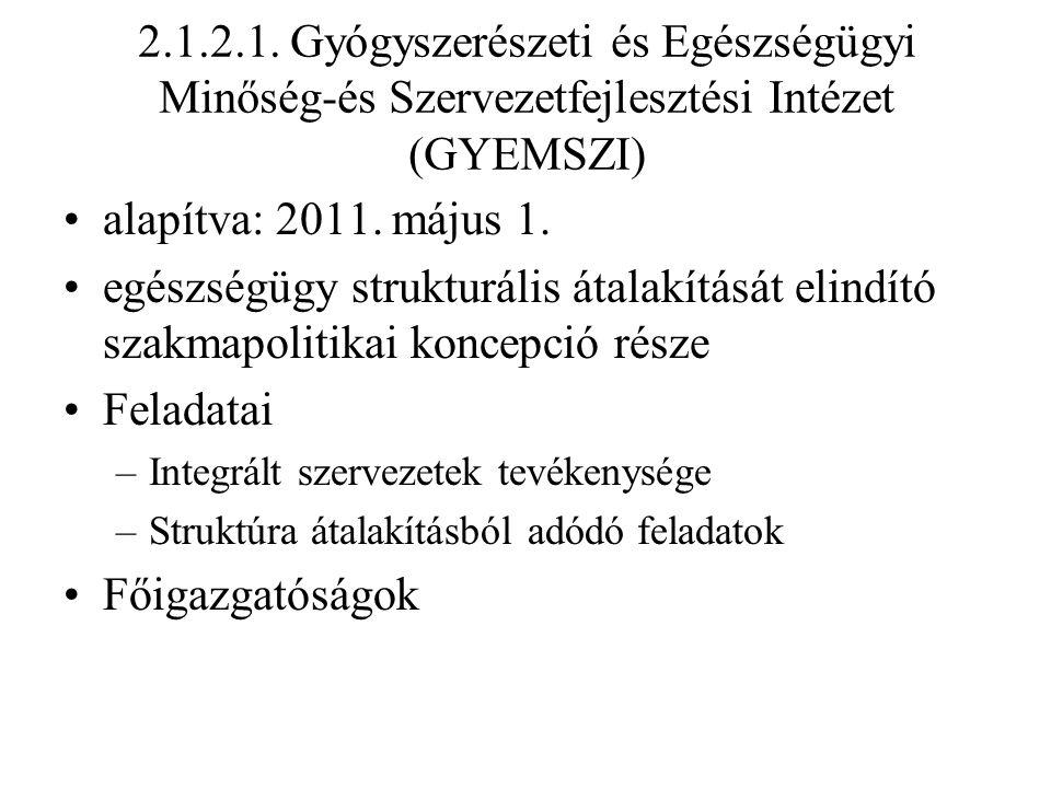 2.1.2.1. Gyógyszerészeti és Egészségügyi Minőség-és Szervezetfejlesztési Intézet (GYEMSZI) alapítva: 2011. május 1. egészségügy strukturális átalakítá