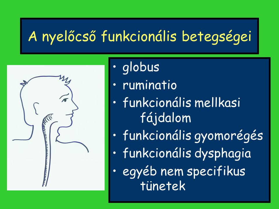 A funkcionális gastroenterológiai betegségek kezelésének lényege A BETEGET kell kezelni, nem csak a betegséget!