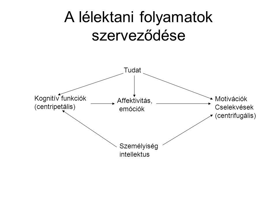 A lélektani folyamatok szerveződése Tudat Kognitív funkciók (centripetális) Affektivitás, emóciók Motivációk Cselekvések (centrifugális) Személyiség intellektus