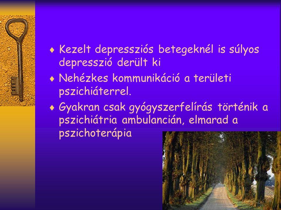  Kezelt depressziós betegeknél is súlyos depresszió derült ki  Nehézkes kommunikáció a területi pszichiáterrel.