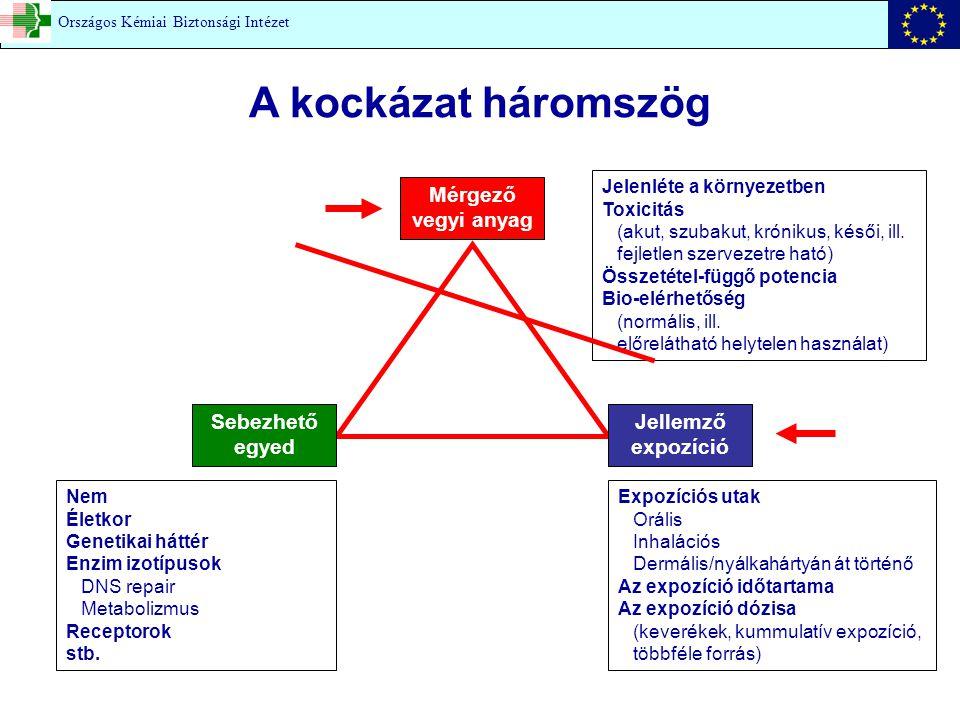 A kockázat háromszög Mérgező vegyi anyag Jelenléte a környezetben Toxicitás (akut, szubakut, krónikus, késői, ill.