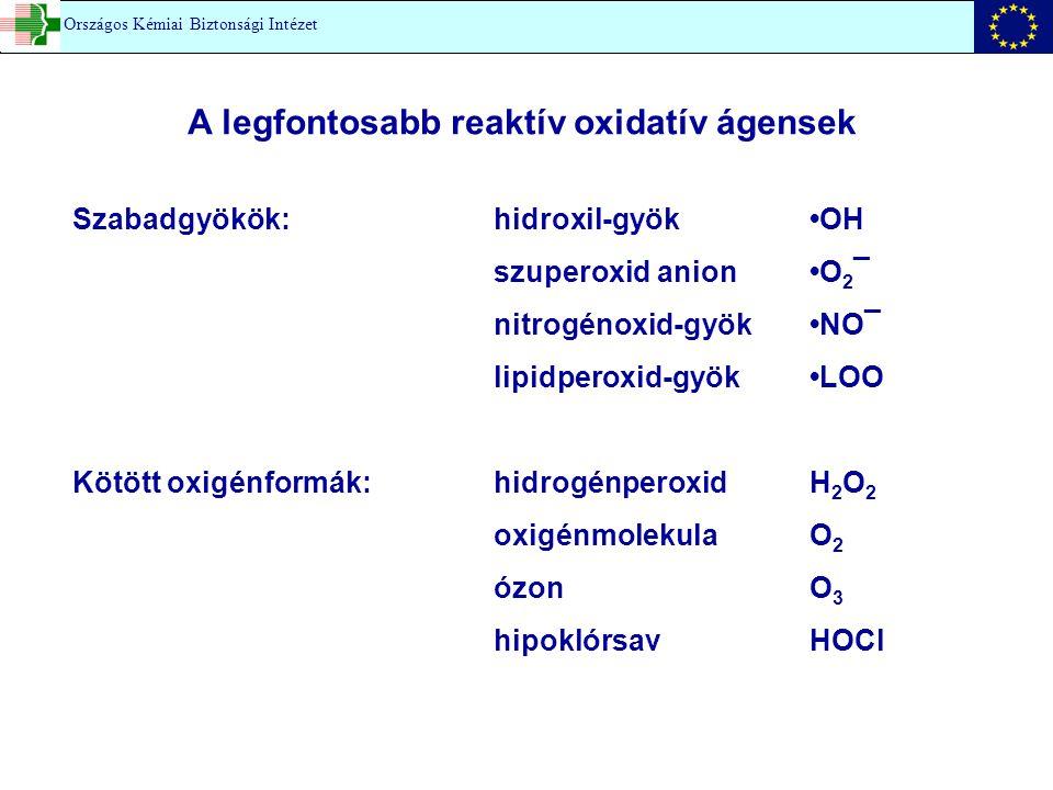 A legfontosabb reaktív oxidatív ágensek Szabadgyökök: hidroxil-gyök OH szuperoxid anionO 2 ¯ nitrogénoxid-gyökNO¯ lipidperoxid-gyökLOO Kötött oxigénfo