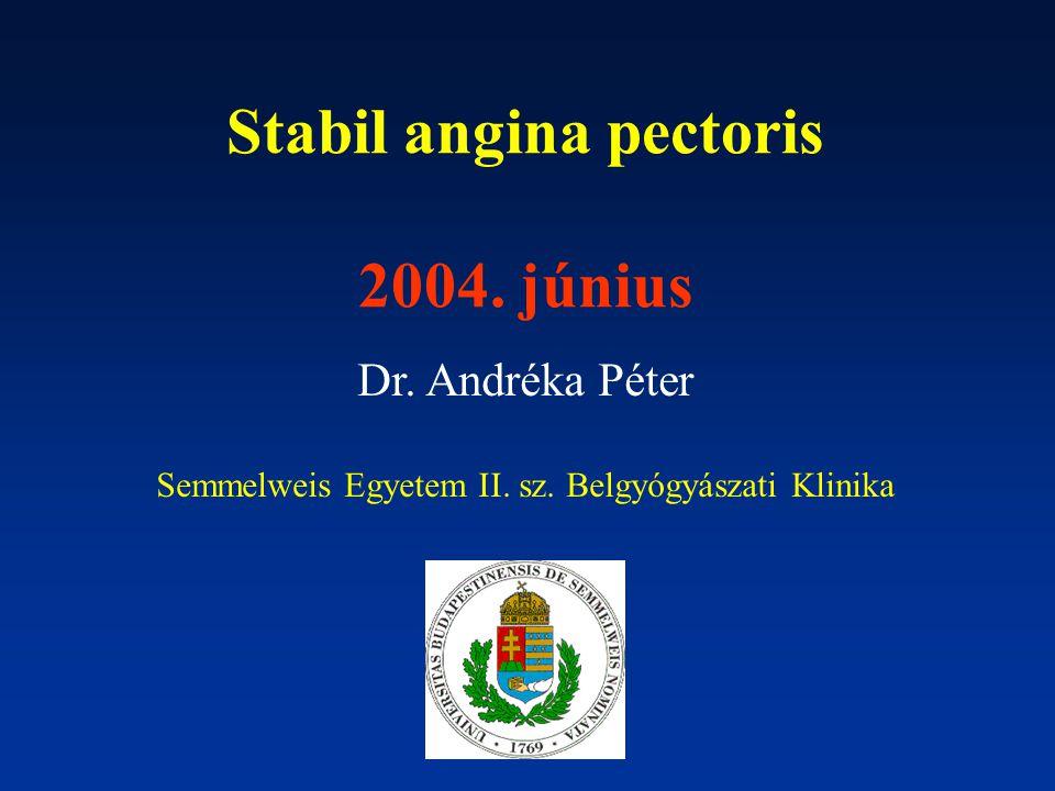 Stabil angina pectoris 2004. június Dr. Andréka Péter Semmelweis Egyetem II. sz. Belgyógyászati Klinika