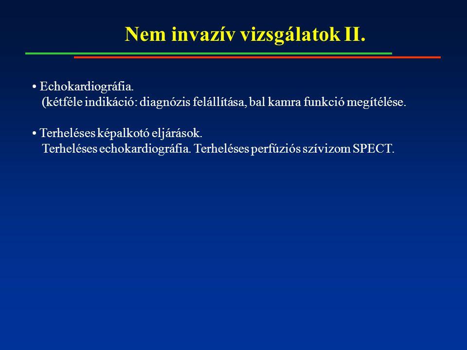 Nem invazív vizsgálatok II. Echokardiográfia.