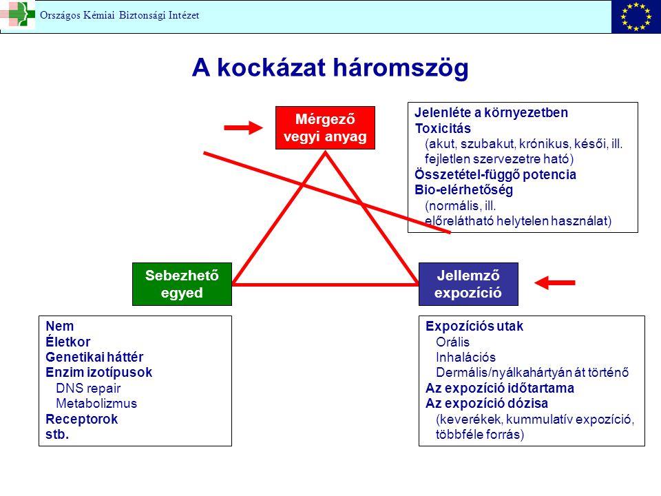 A kockázat háromszög Mérgező vegyi anyag Jelenléte a környezetben Toxicitás (akut, szubakut, krónikus, késői, ill. fejletlen szervezetre ható) Összeté